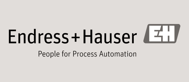 Schwarzweiß Logo der Endress+Hauser AG.