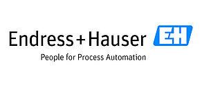 Logo der Endress+Hauser AG.